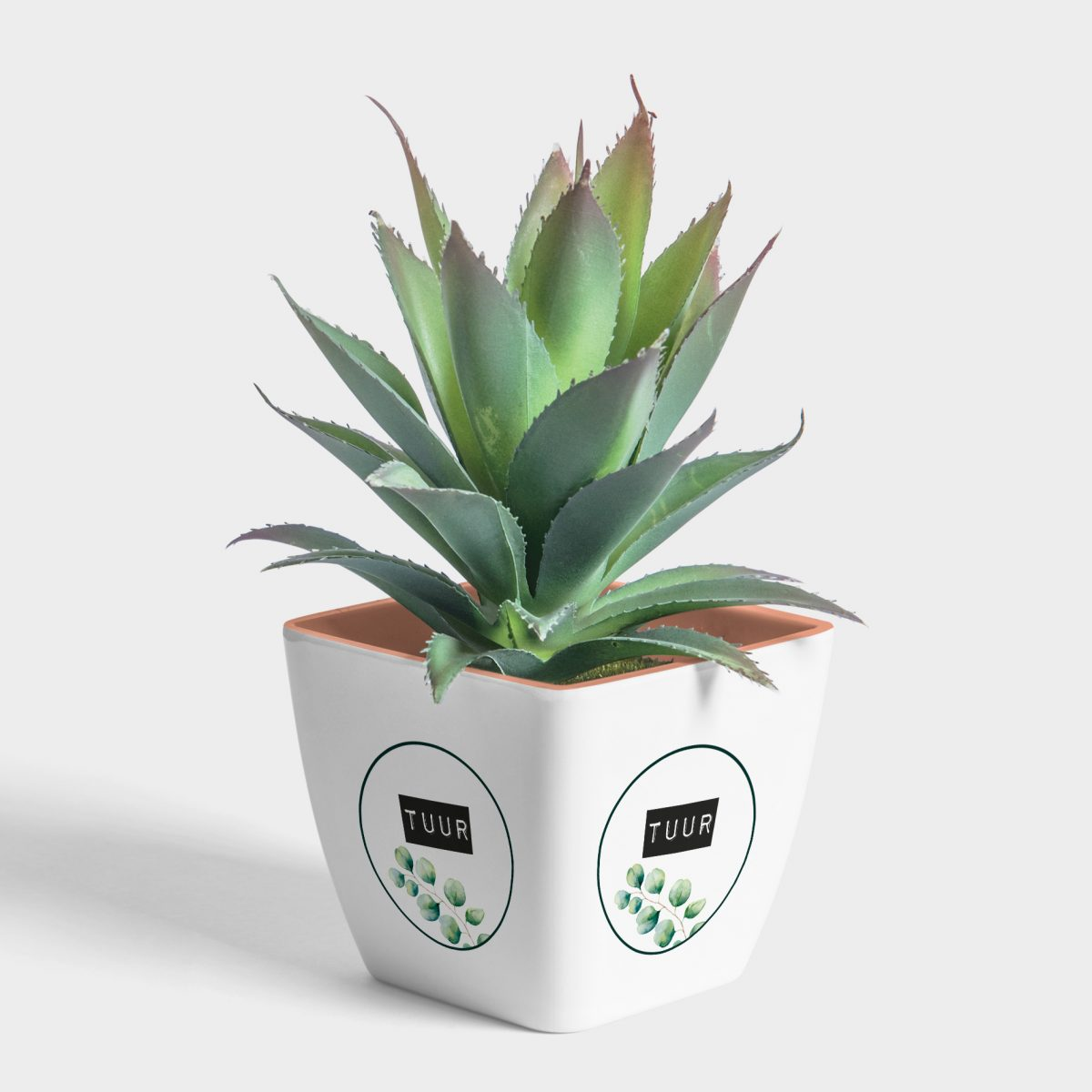 plant-pot-mockup