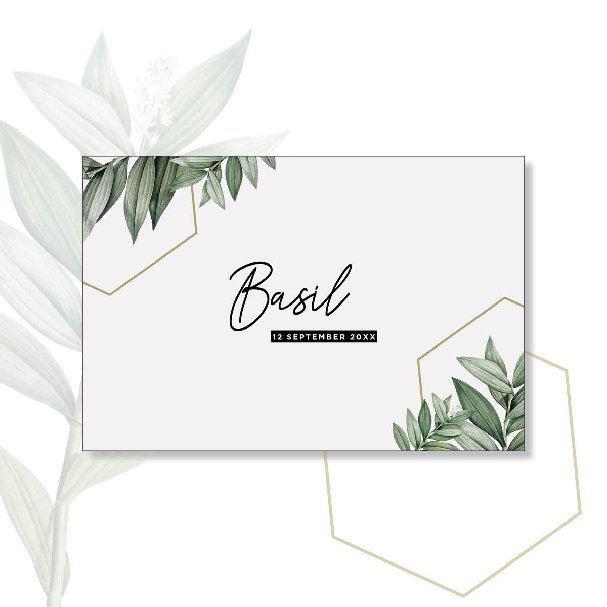web basil steffi 10×15 enkel