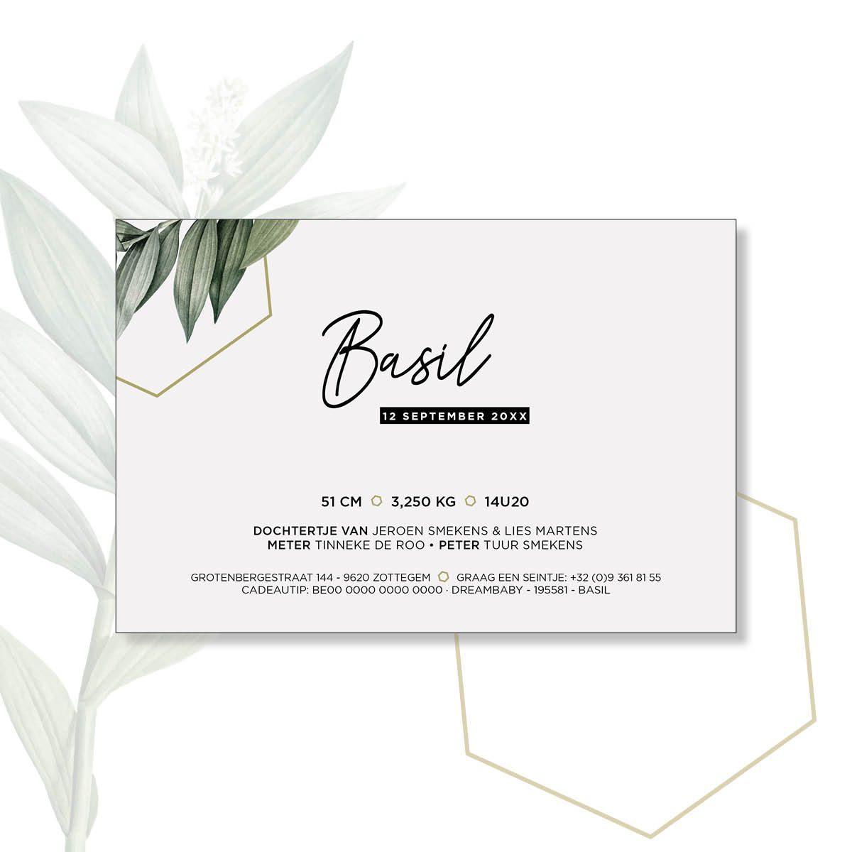web basil steffi 10×15 enkel2